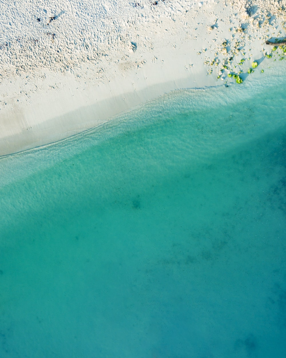 top view photography of seashore