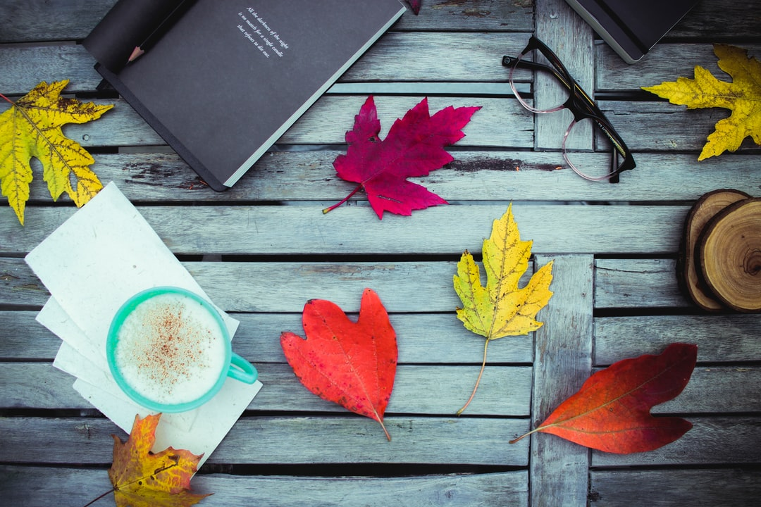 Fall is a magical time to read poetry outside beneath a canopy of color.  The book featured in this photograph is Your Soul Is A River, by Nikita Gill.