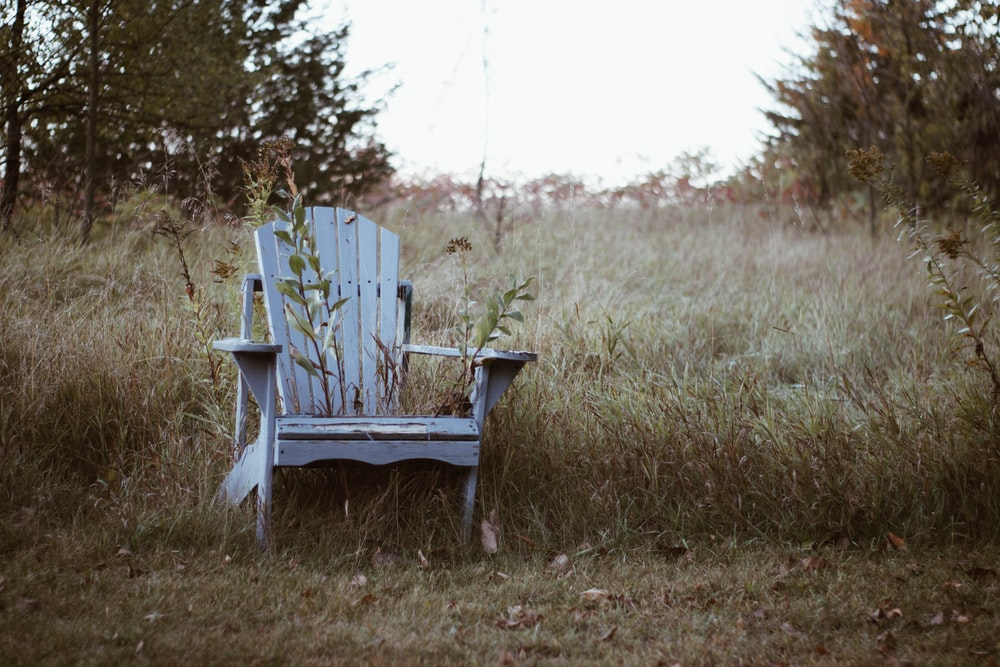 white wooden Adirondack chair near grass field