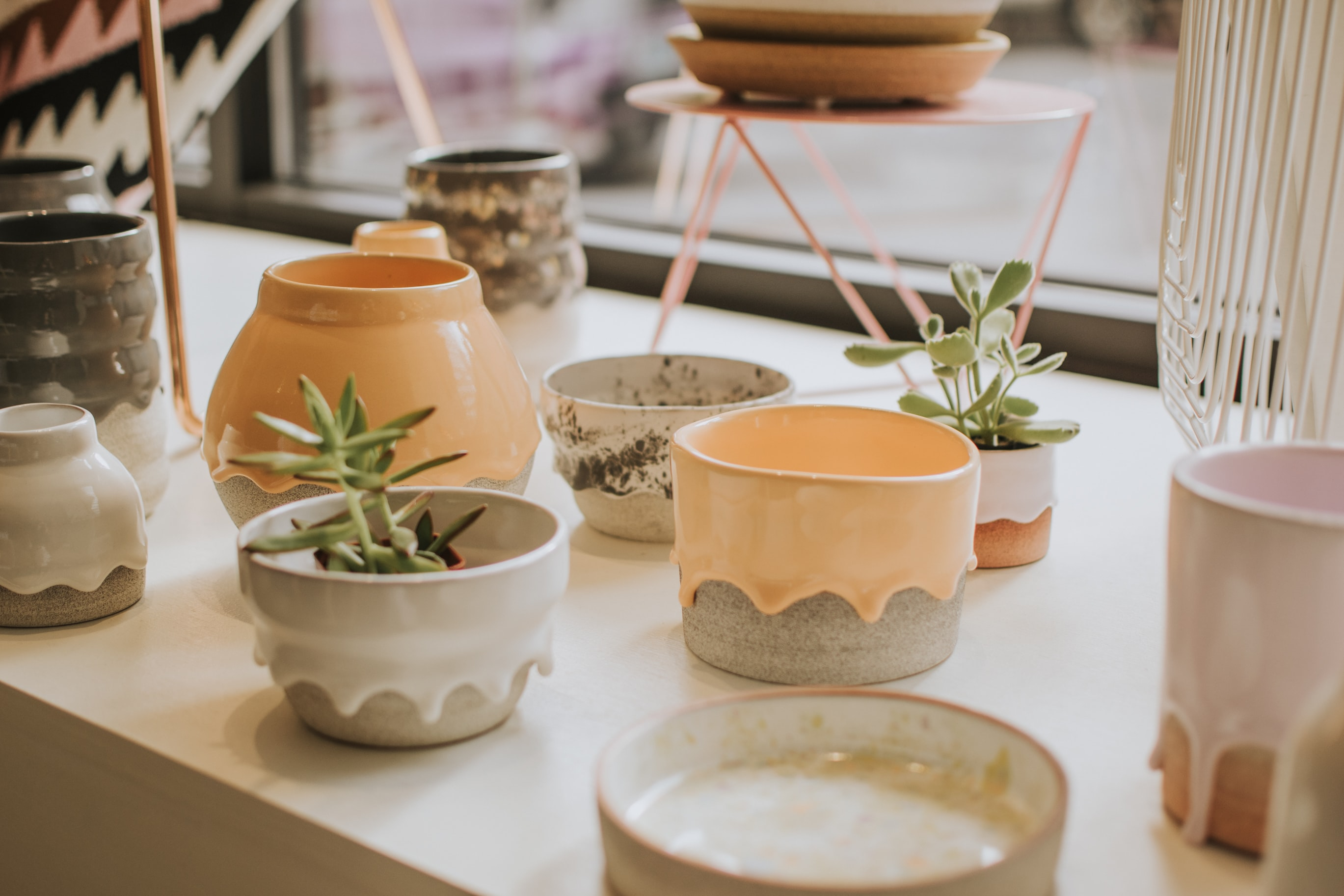 two green succulent plants on white and brown ceramic pots