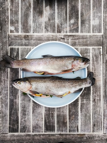 omega 3, omega 3 fats, omega 3 fatty acids, sources of omega 3 fats