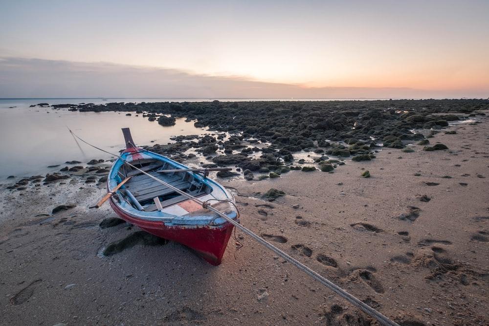 red and blue canoe near seashore
