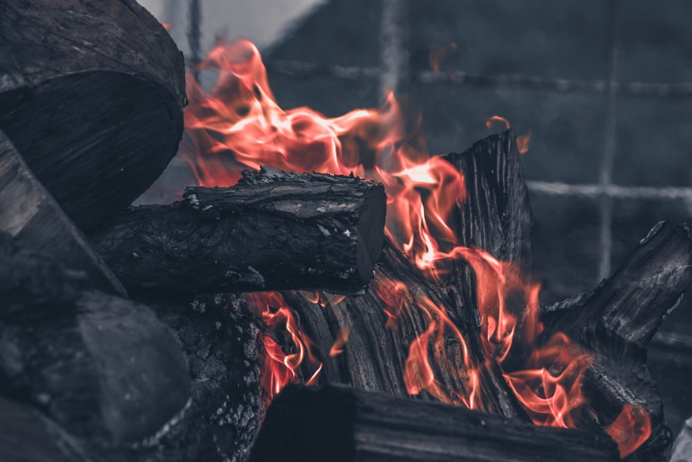 close up photo of wood charcoal on fire