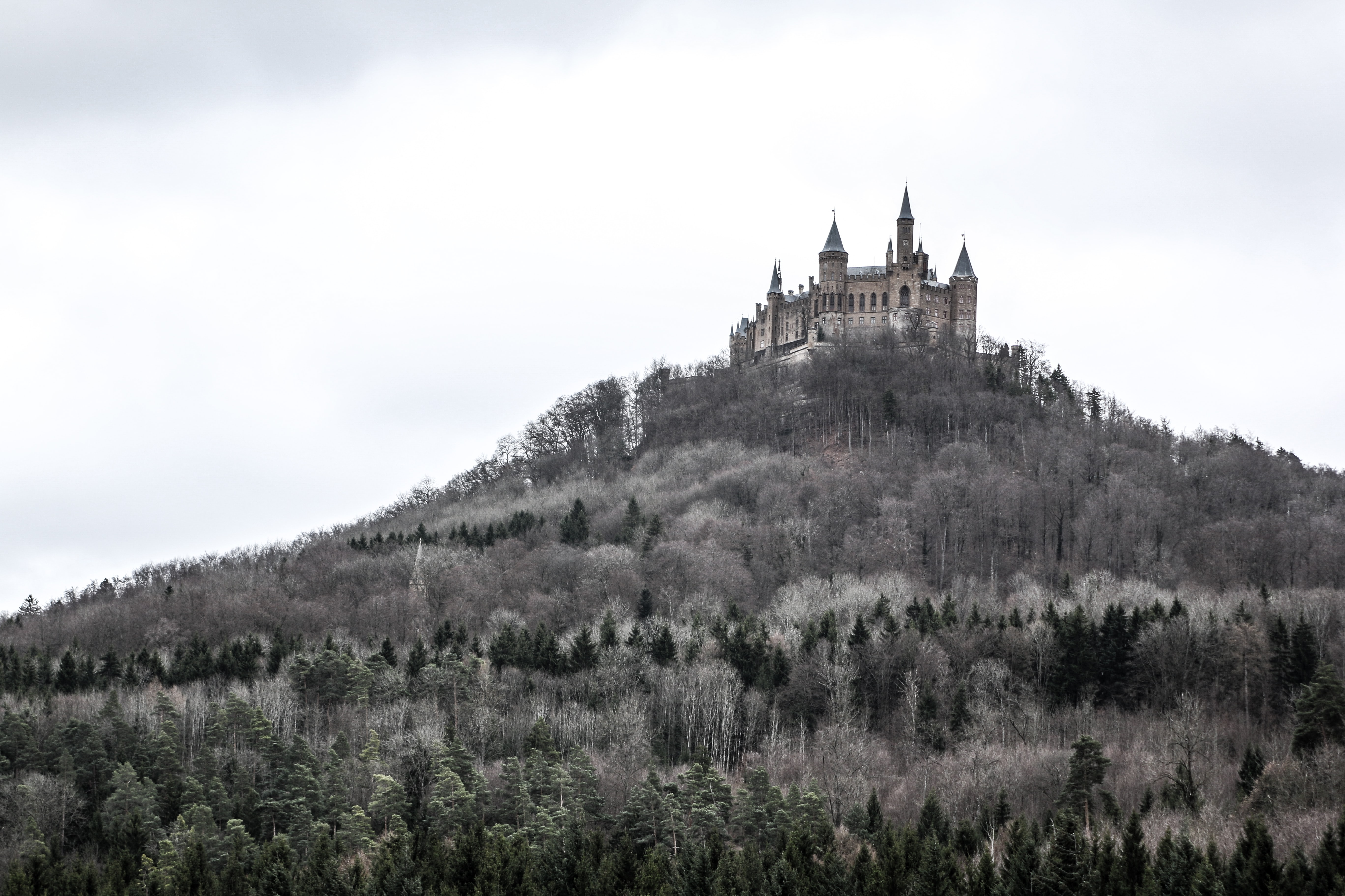photo of castle on hill