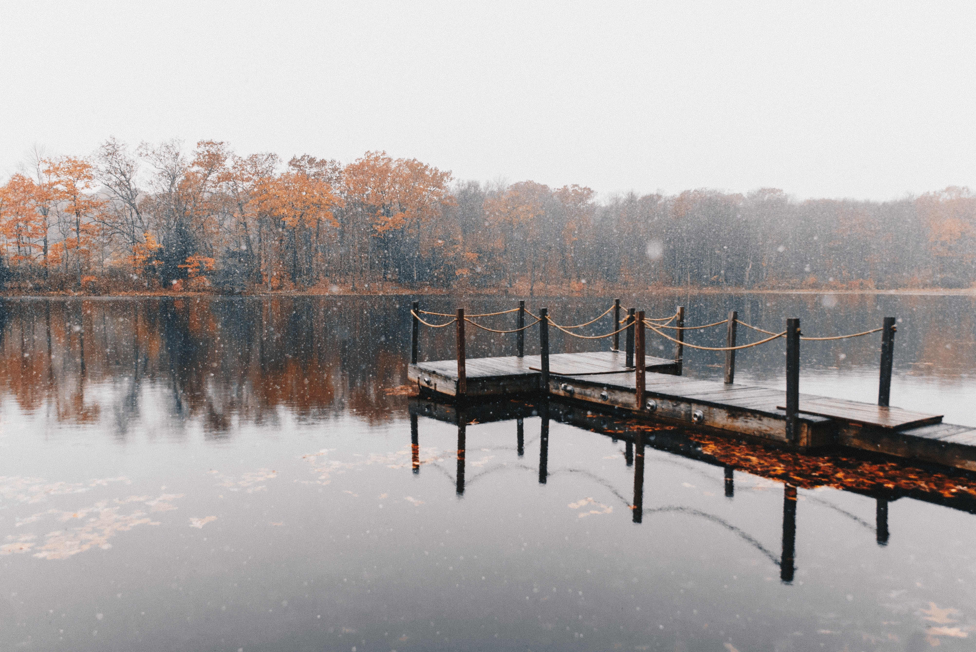 brown dock on body of water