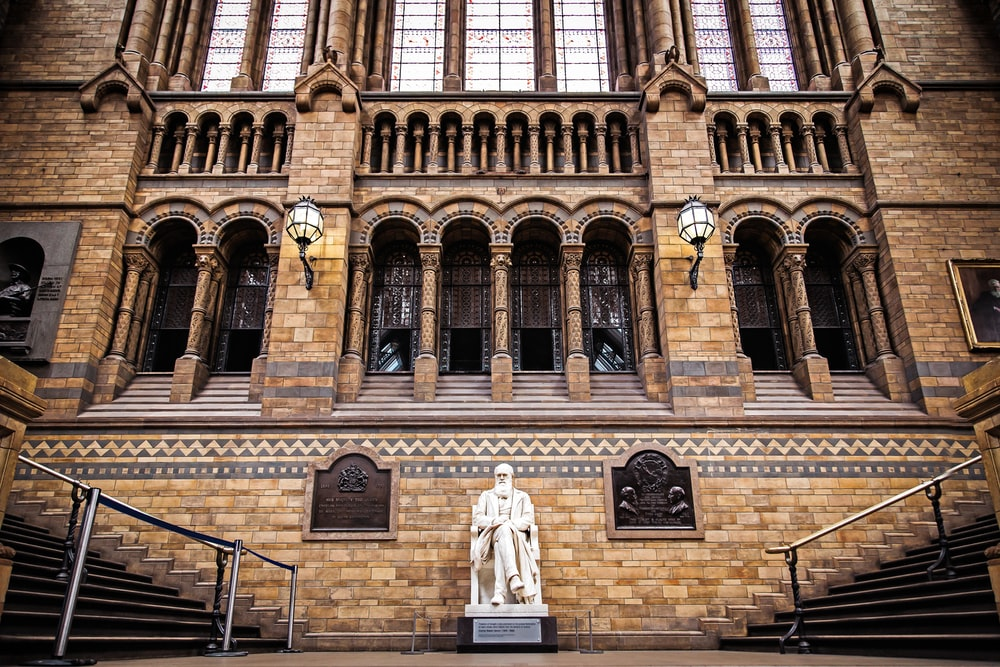landscape photo of statue infront of brown building