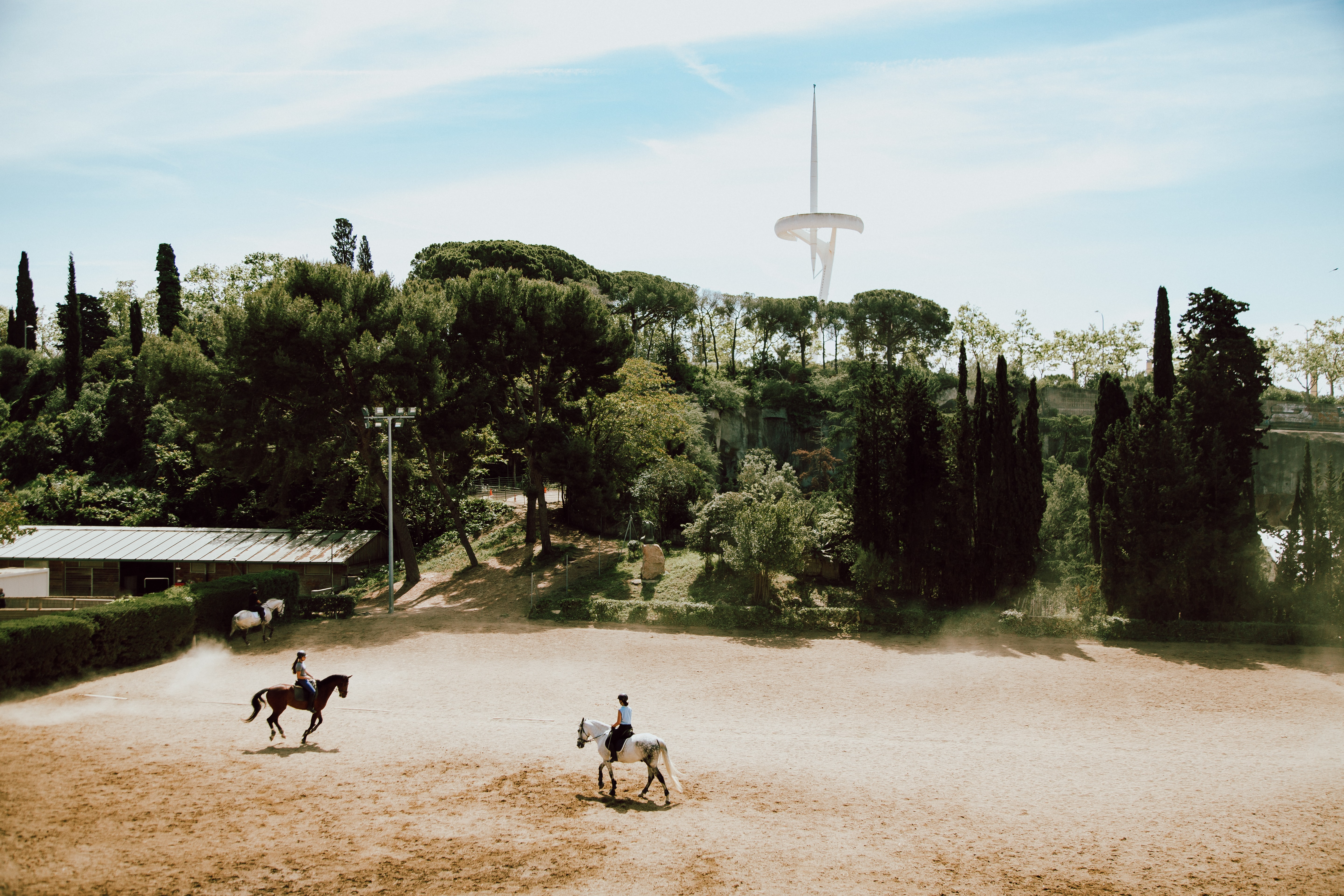 two person on horses on field