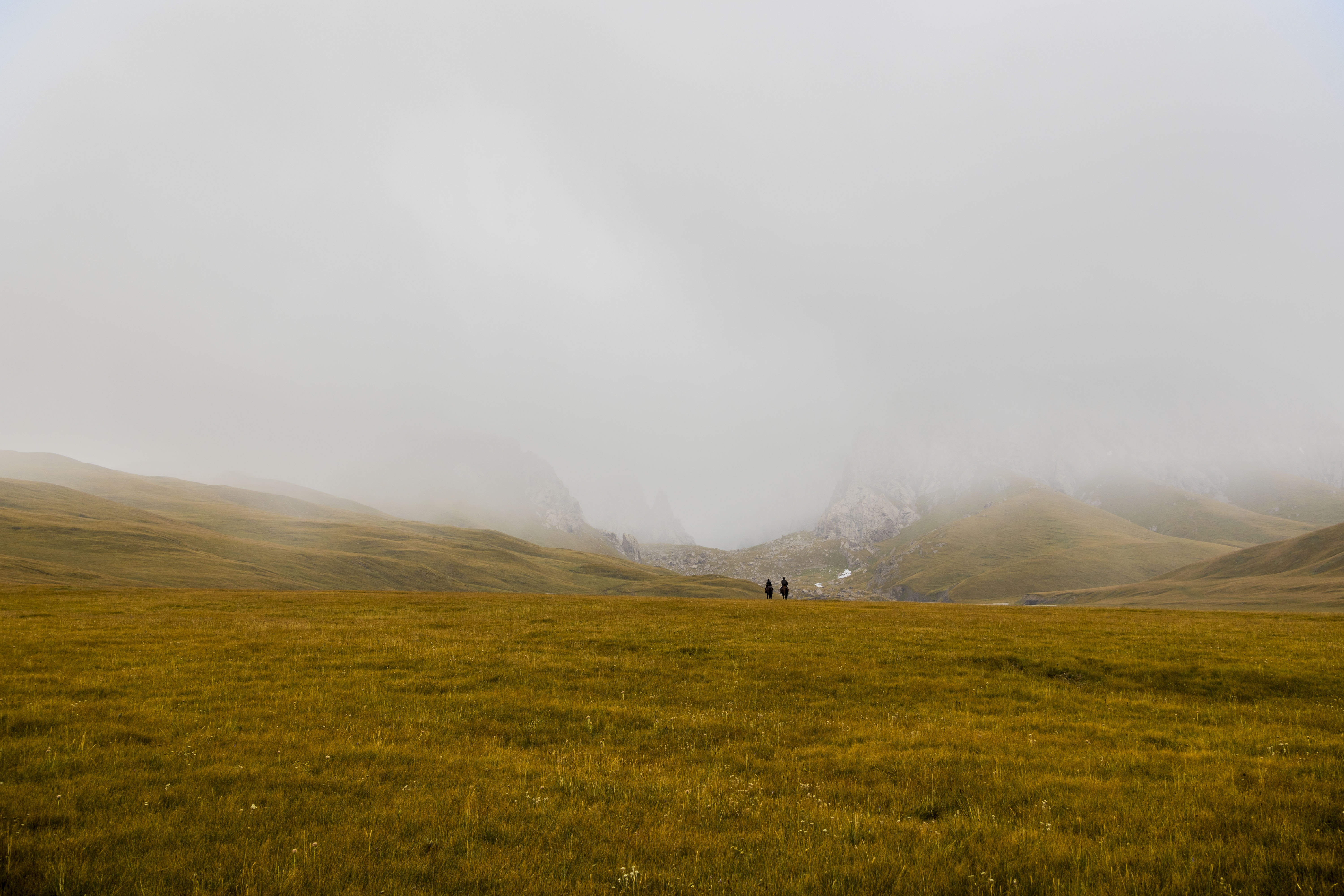 two person in brown grass field under gray sky