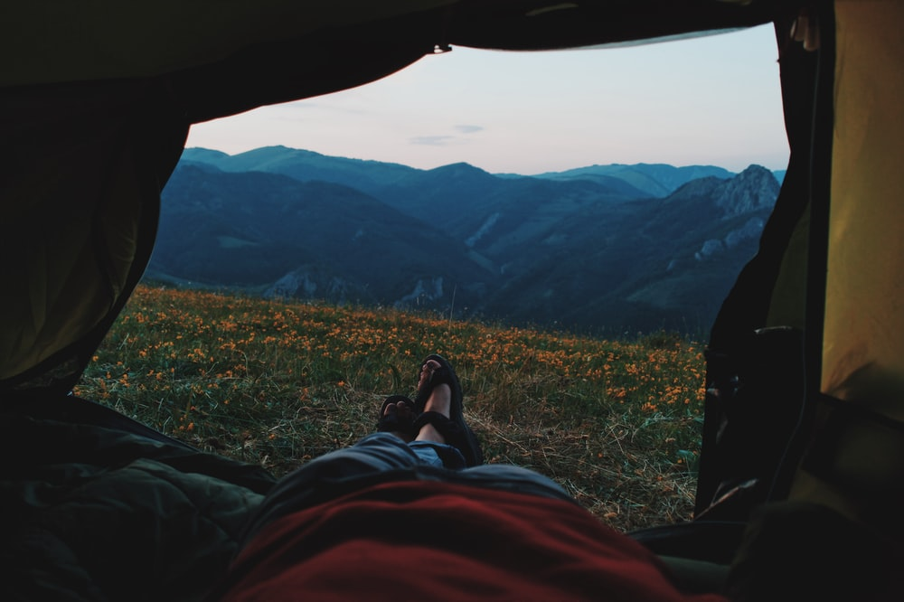 person lying on tent through bed of yellow petaled flowers with mountain in distant