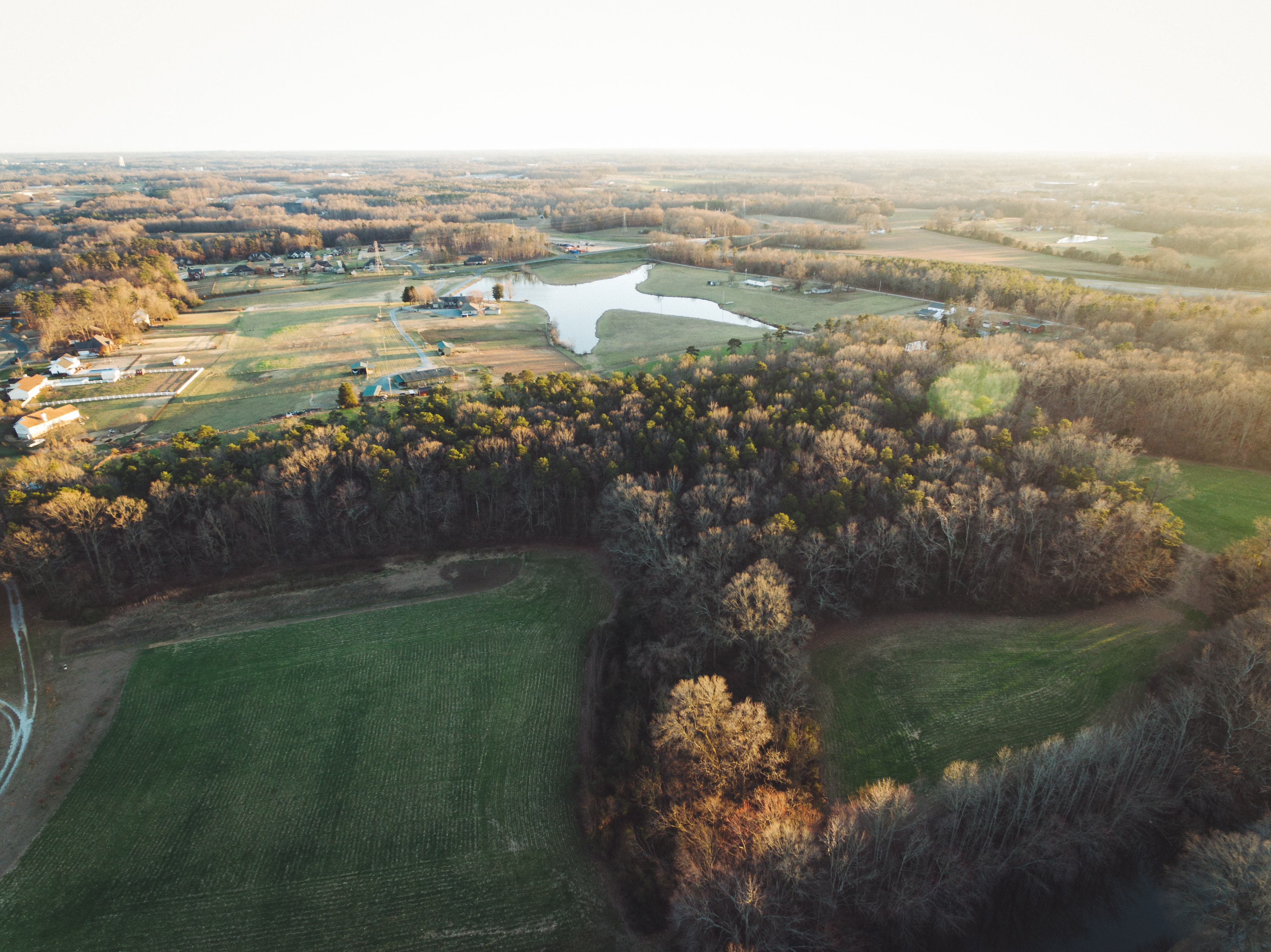 aerial photography of green trees and field during daytime