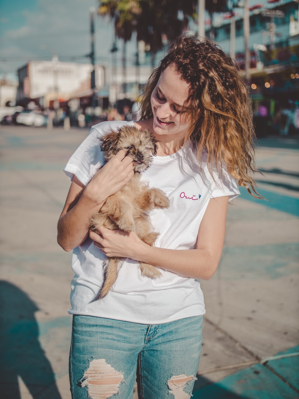 woman carrying long-coated beige puppy