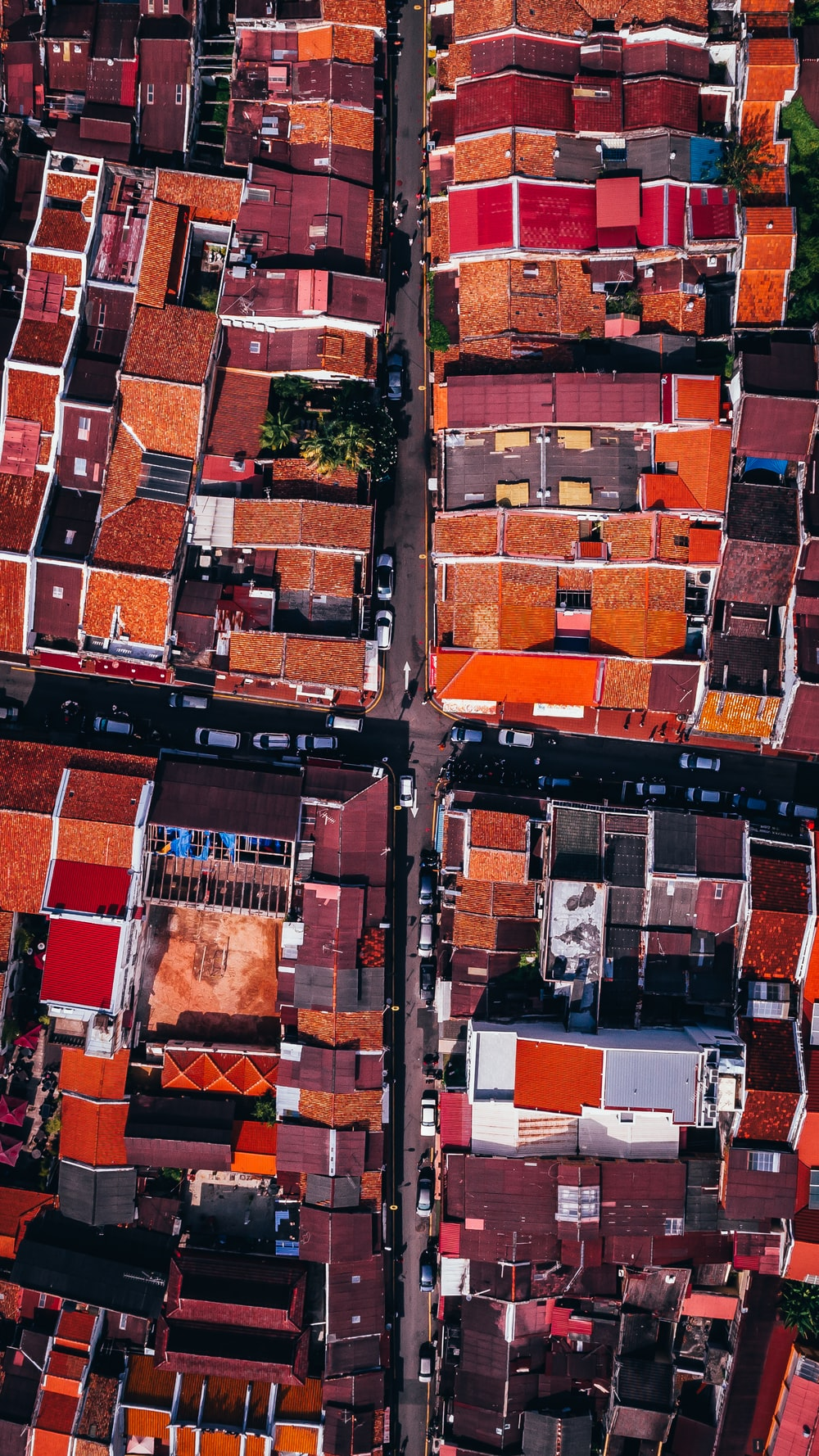 aerial photograph of orange and red roof cityscape