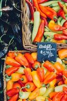 全球食品价格十月继续攀升