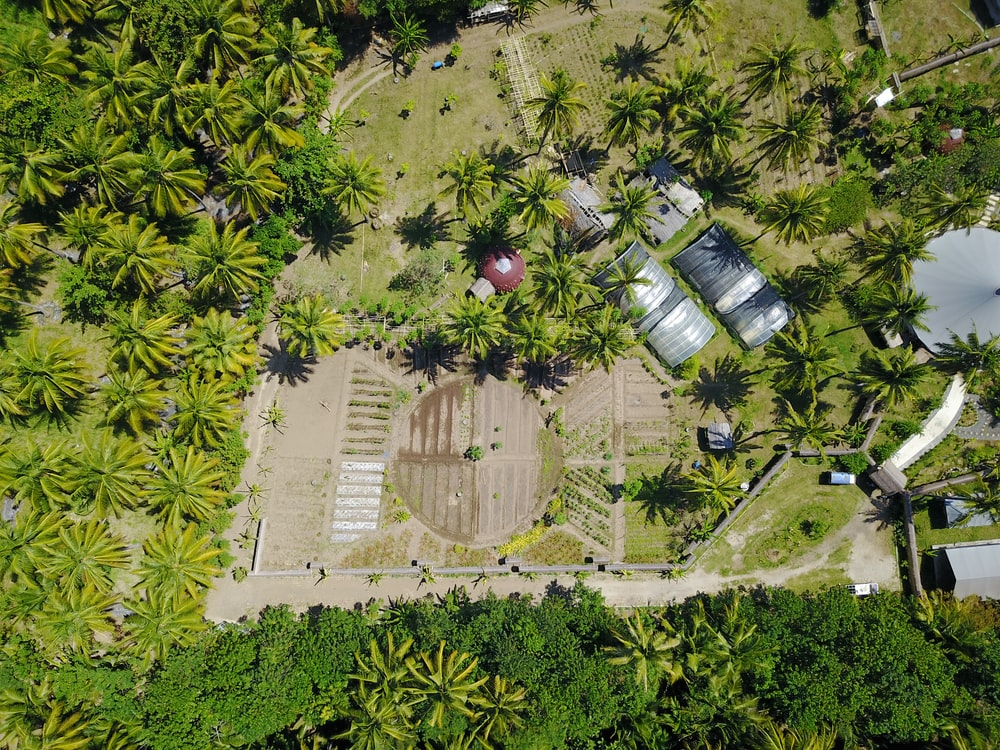 aerial photography of farm