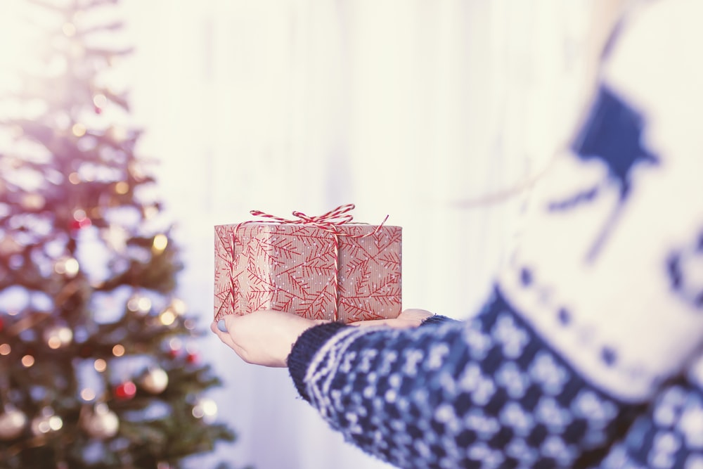 person holding red and brown gift box infront of Christmas tree inside the room