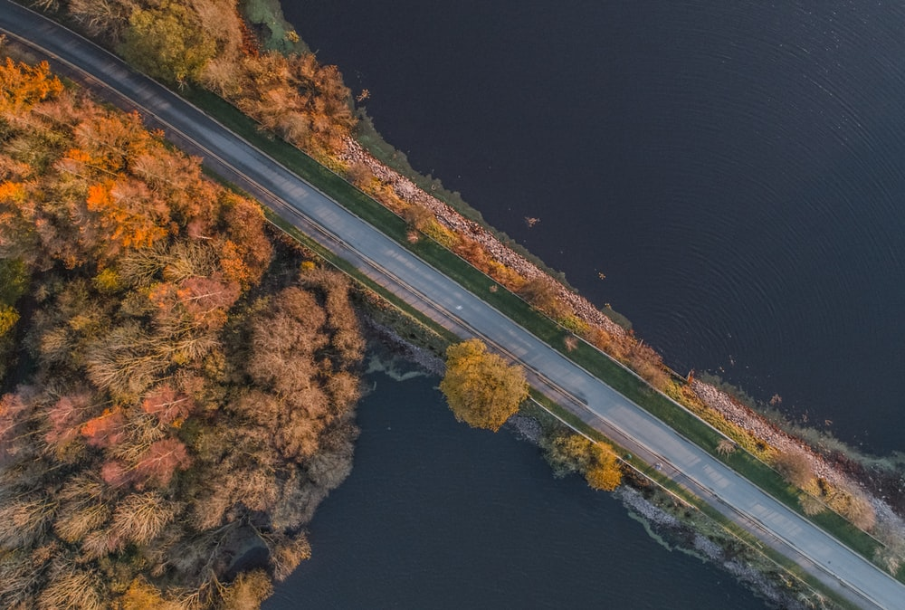 aerial photo of empty road near body of water