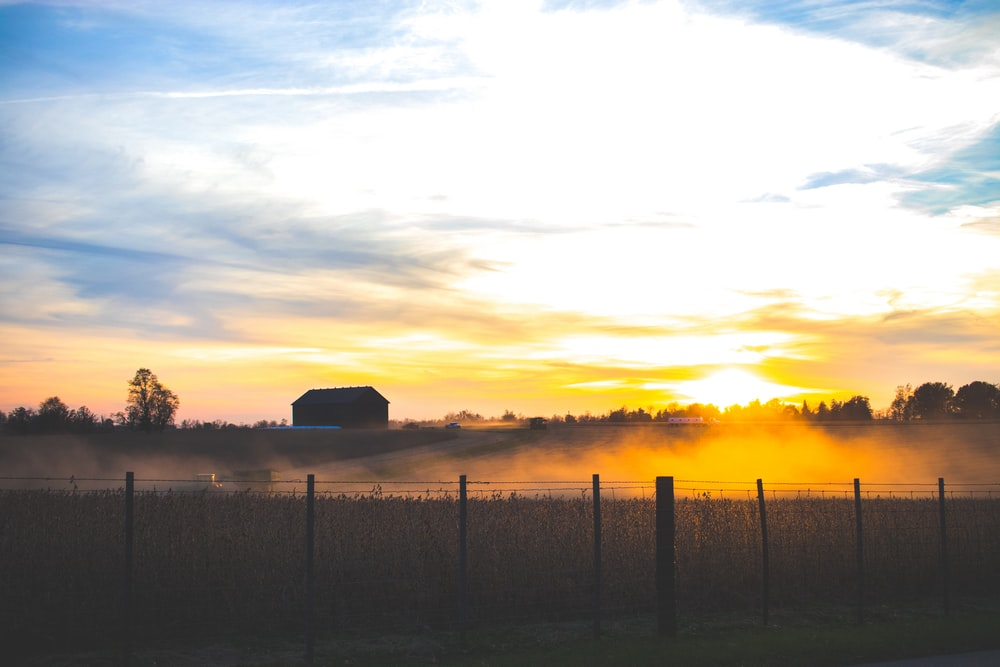 silhouette of barn during sunset