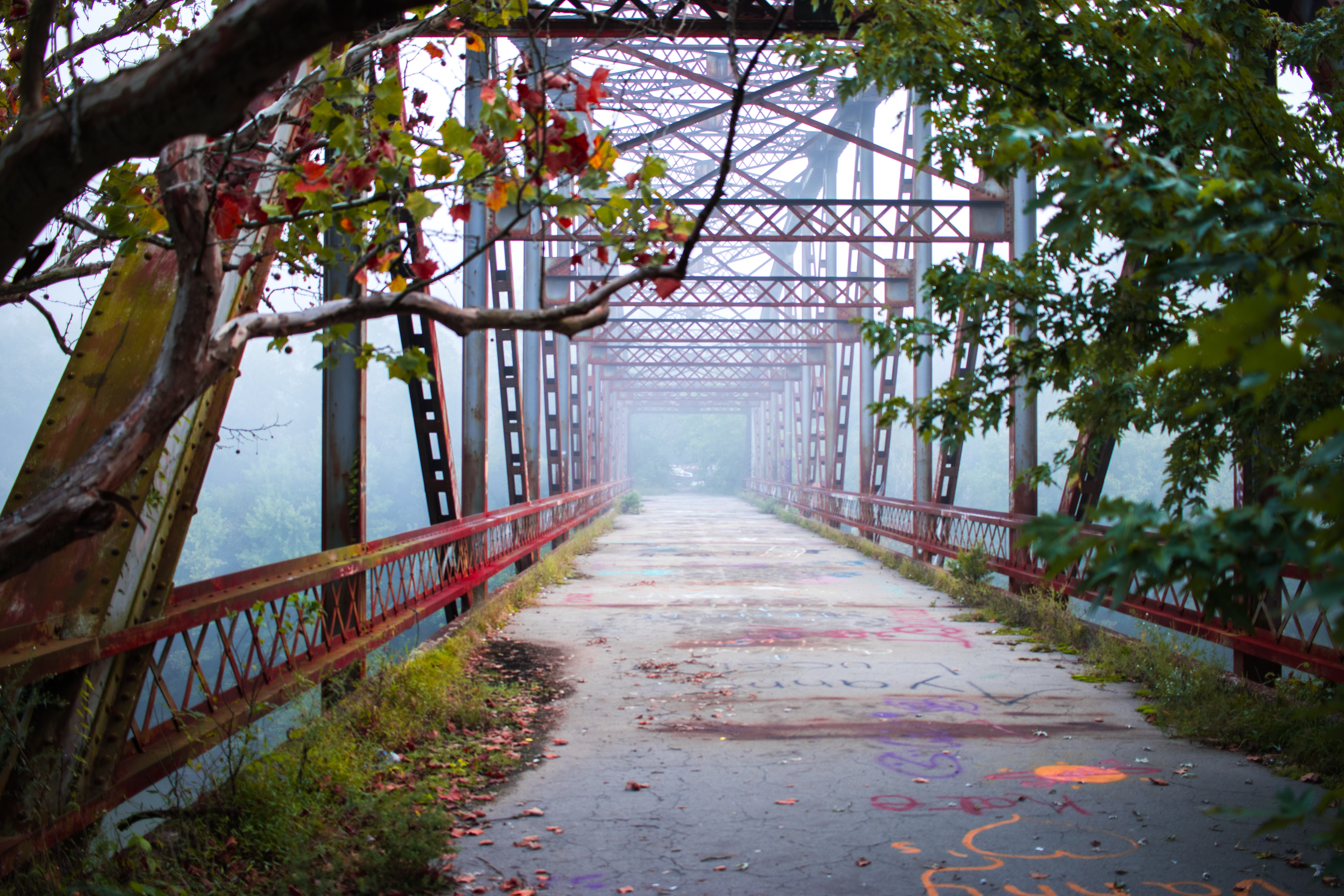red and gray bridge with fog