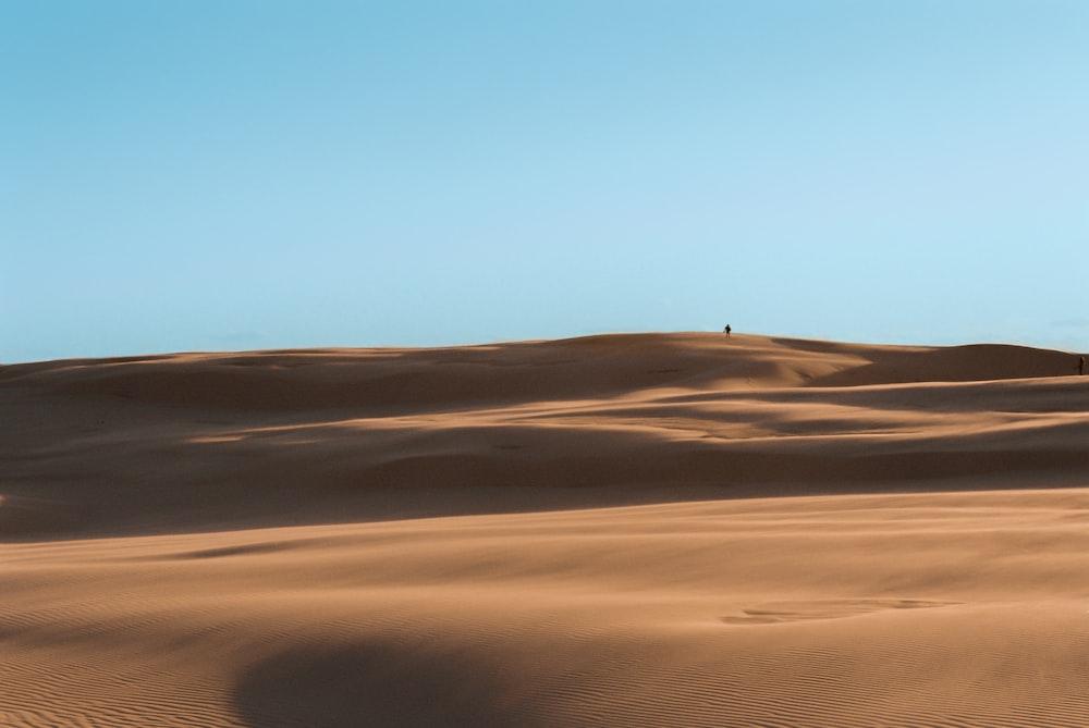 desert under white sky