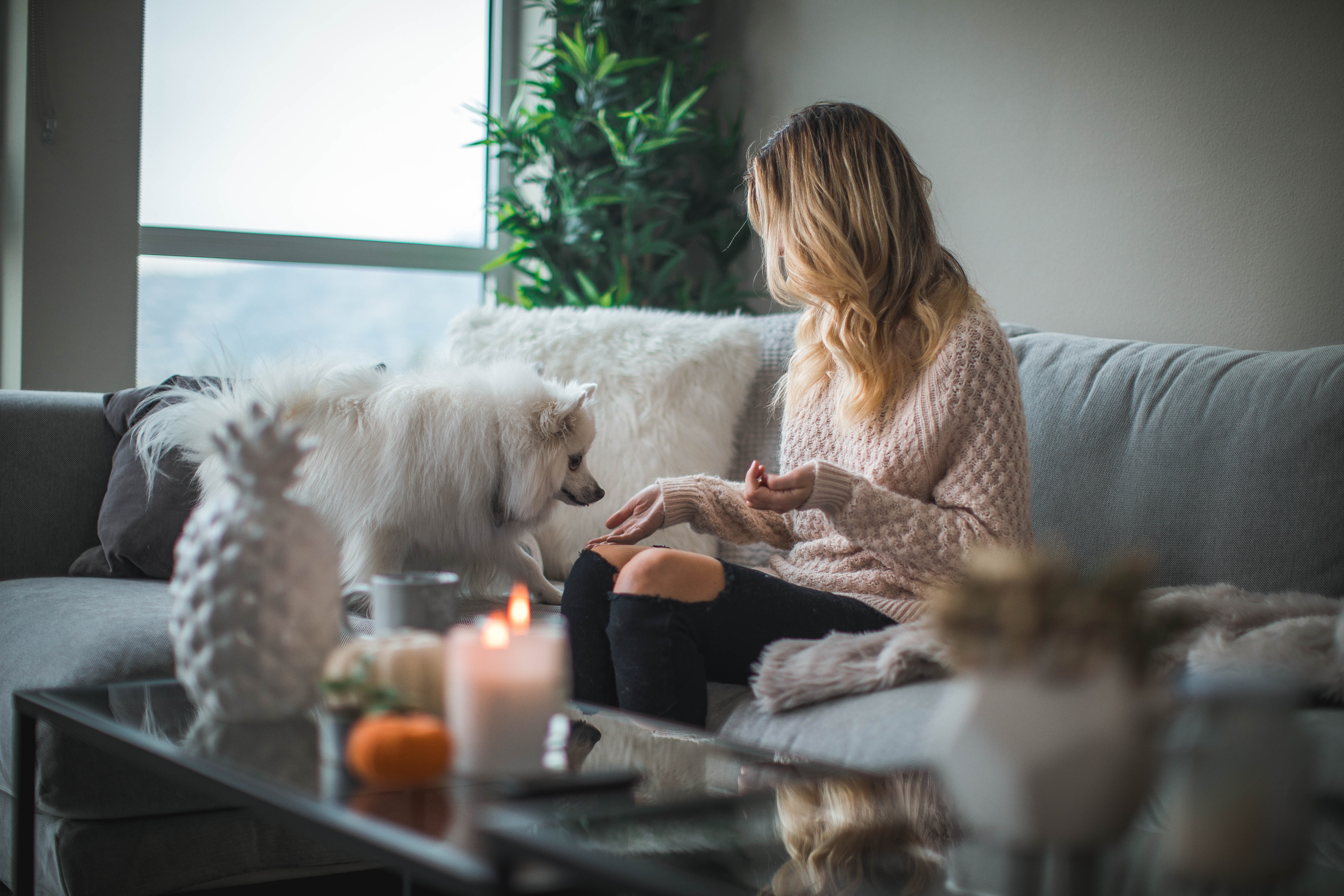 woman sitting on sofa while holding food for dog