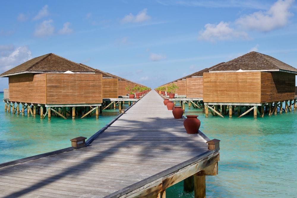 photography of wooden duck bridge