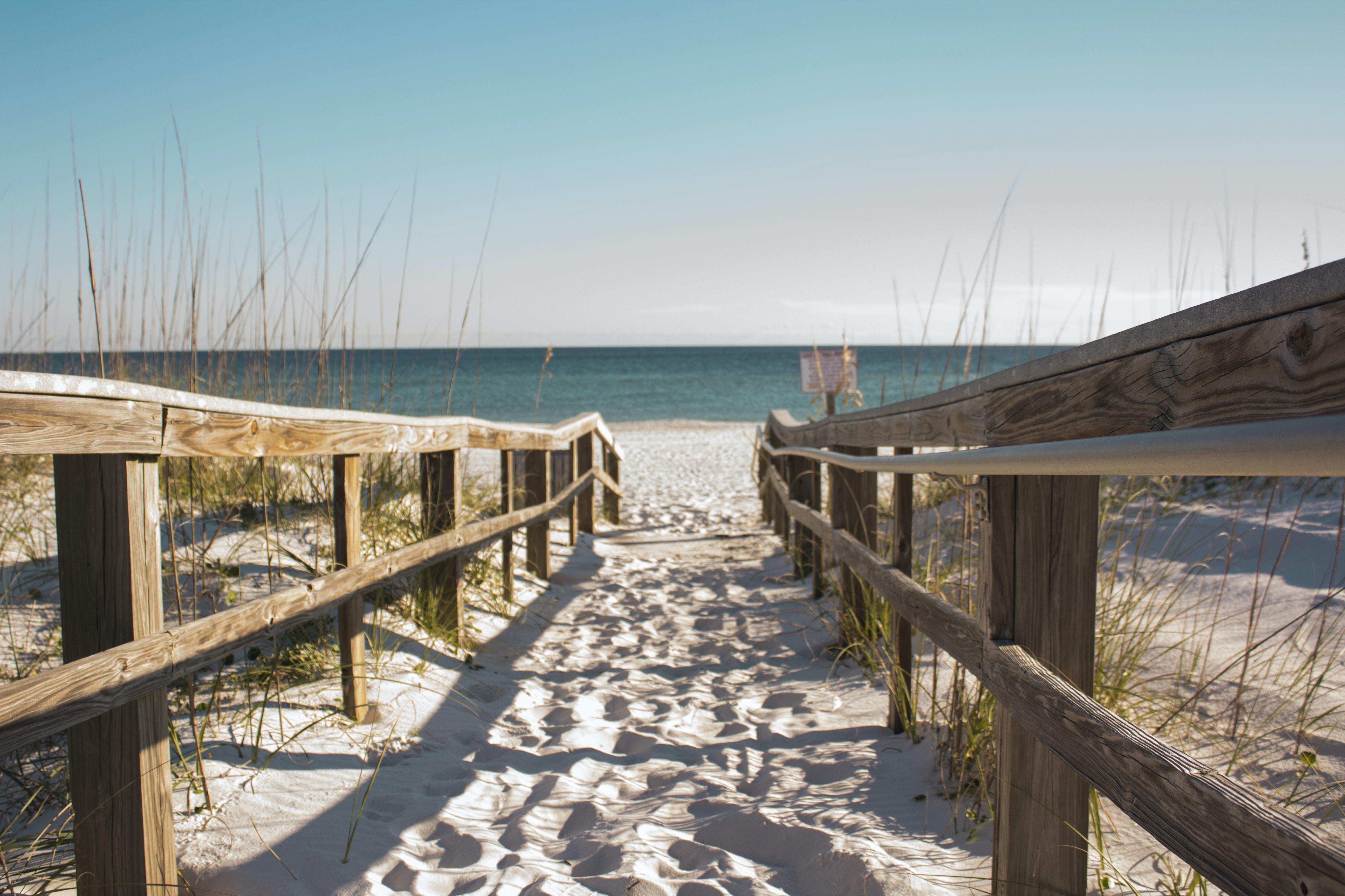 wooden fence towards the ocean