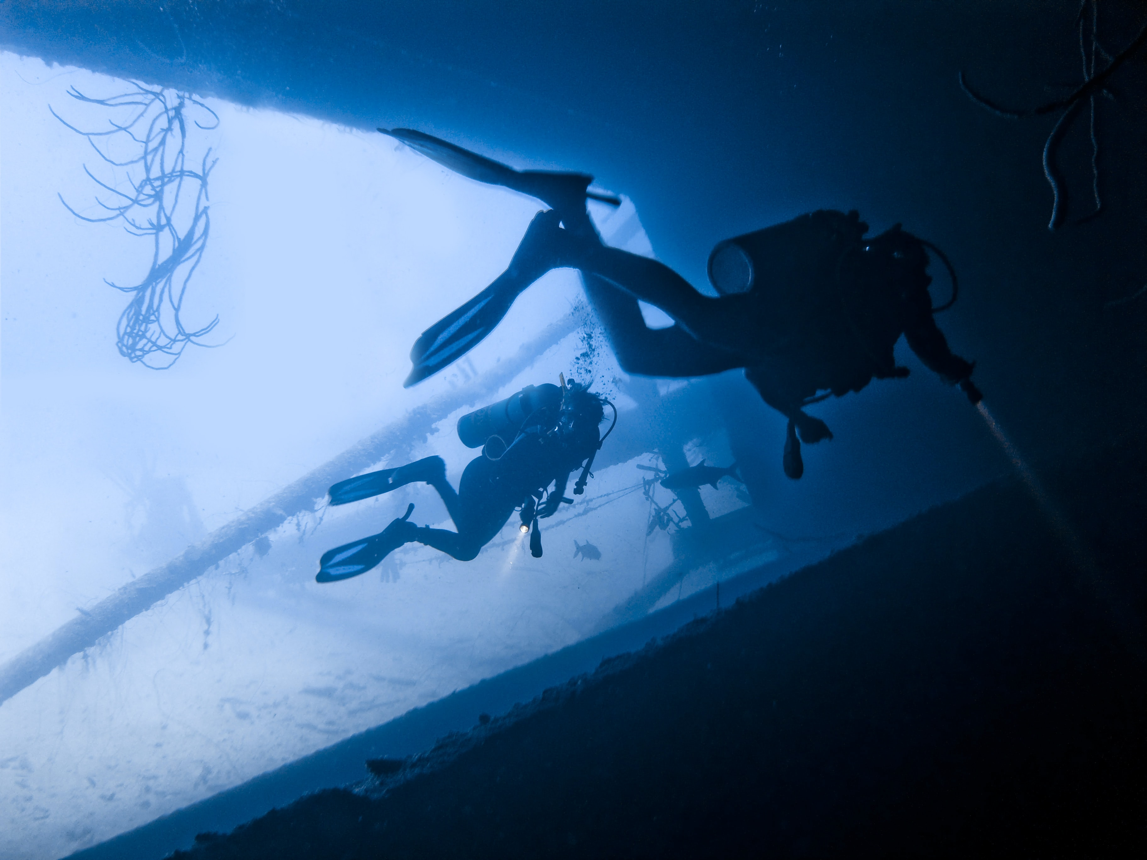 two person scuba diving in water