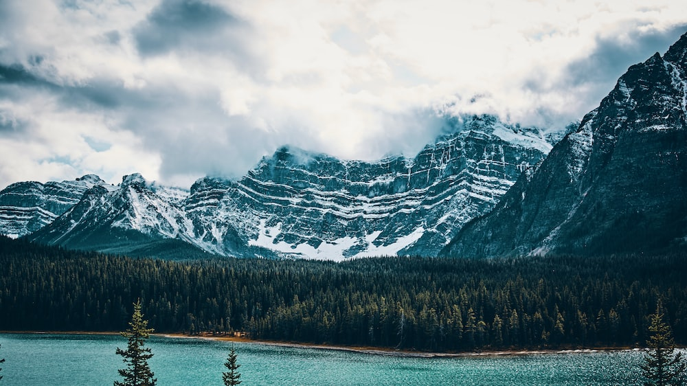body of water beside forest and mountain covered with snow