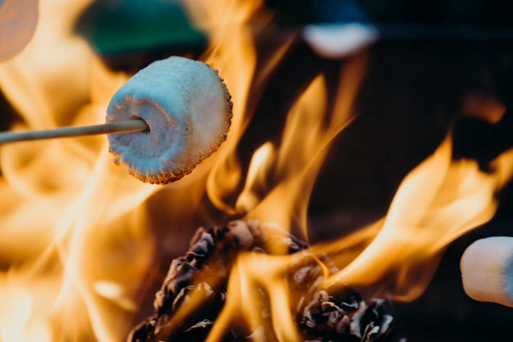person barbecuing marshmallow