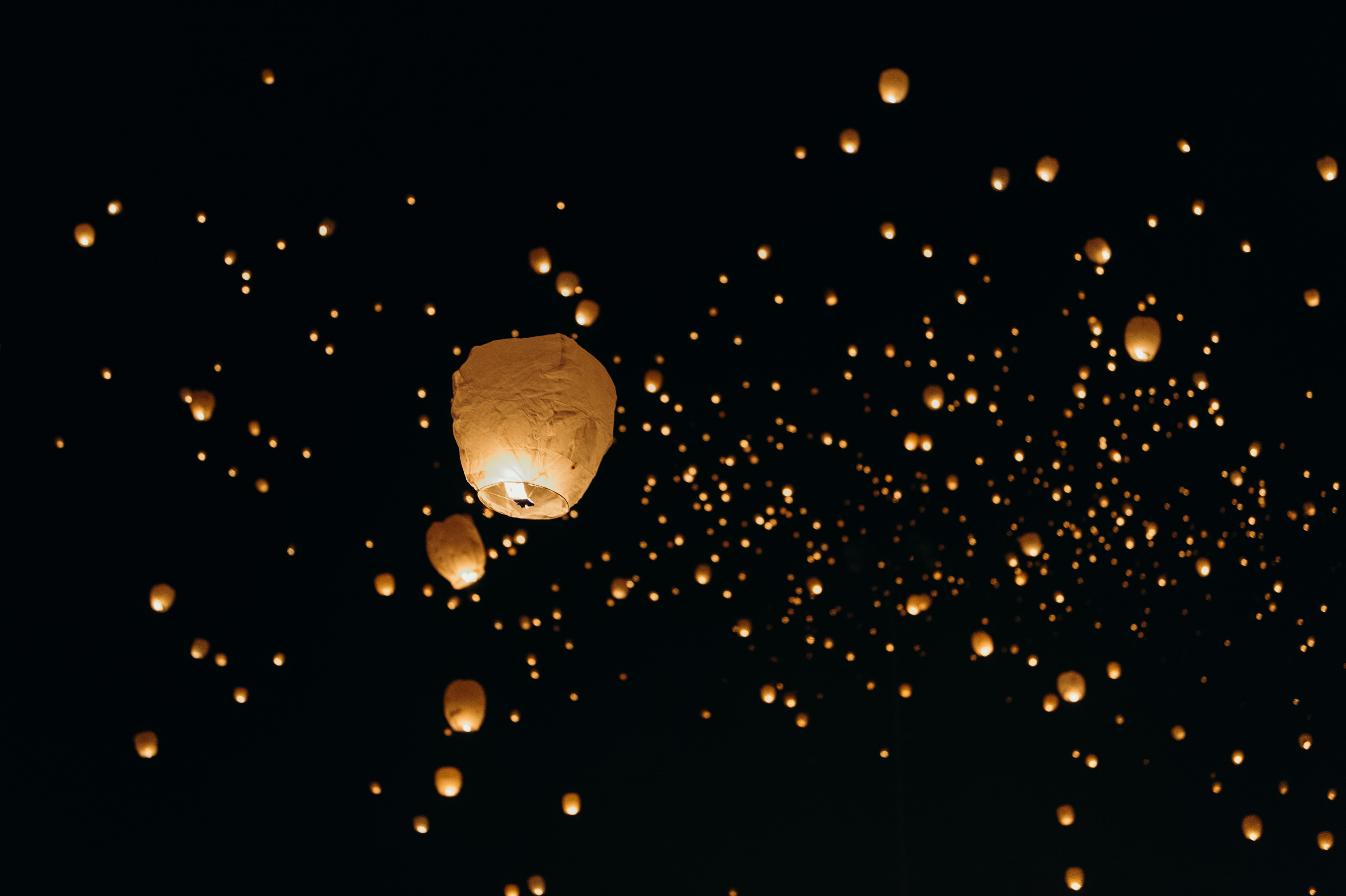 low-angle shot of paper lanterns
