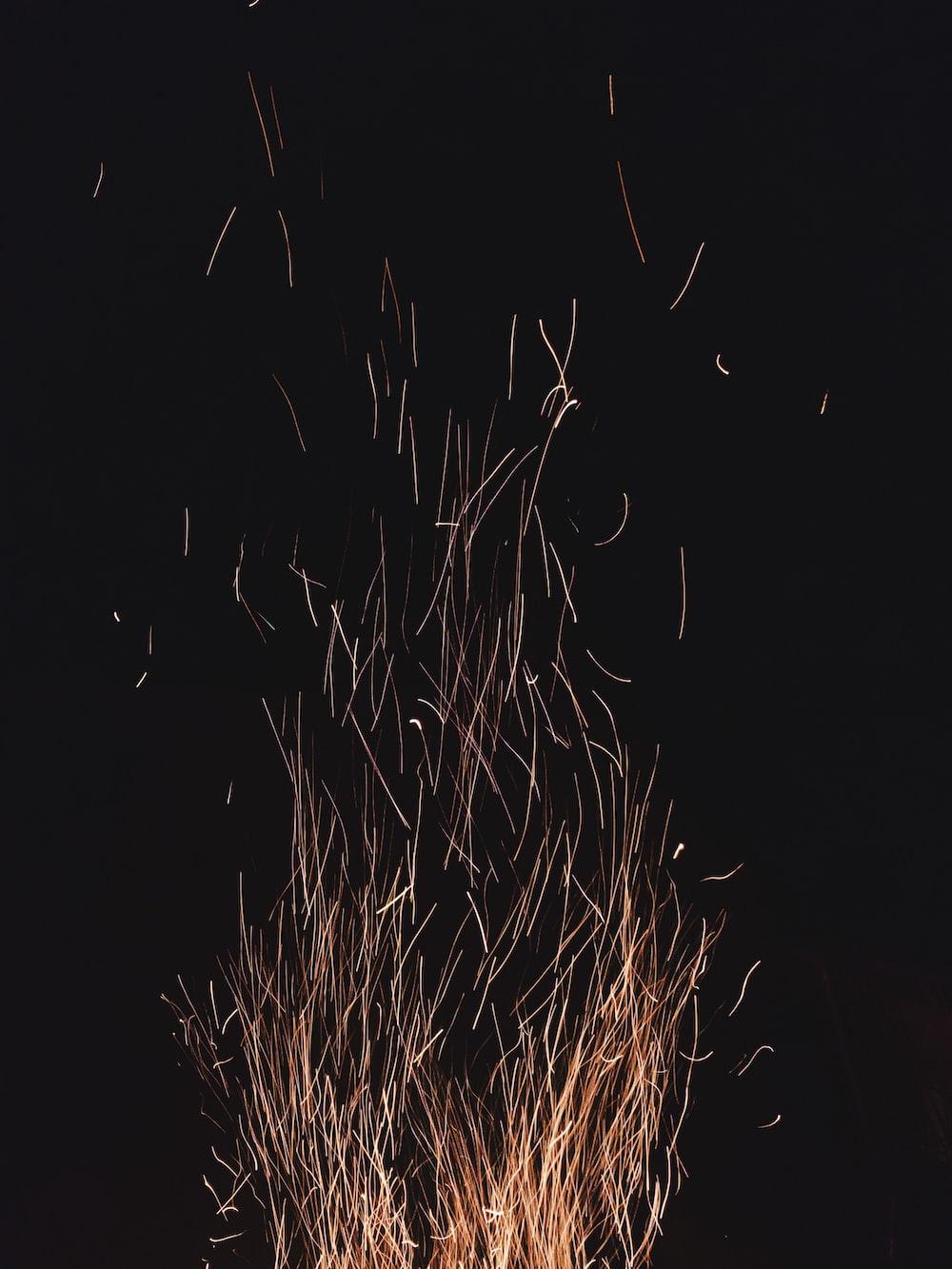 bonfire view