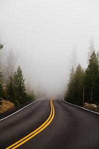foggy empty winding road