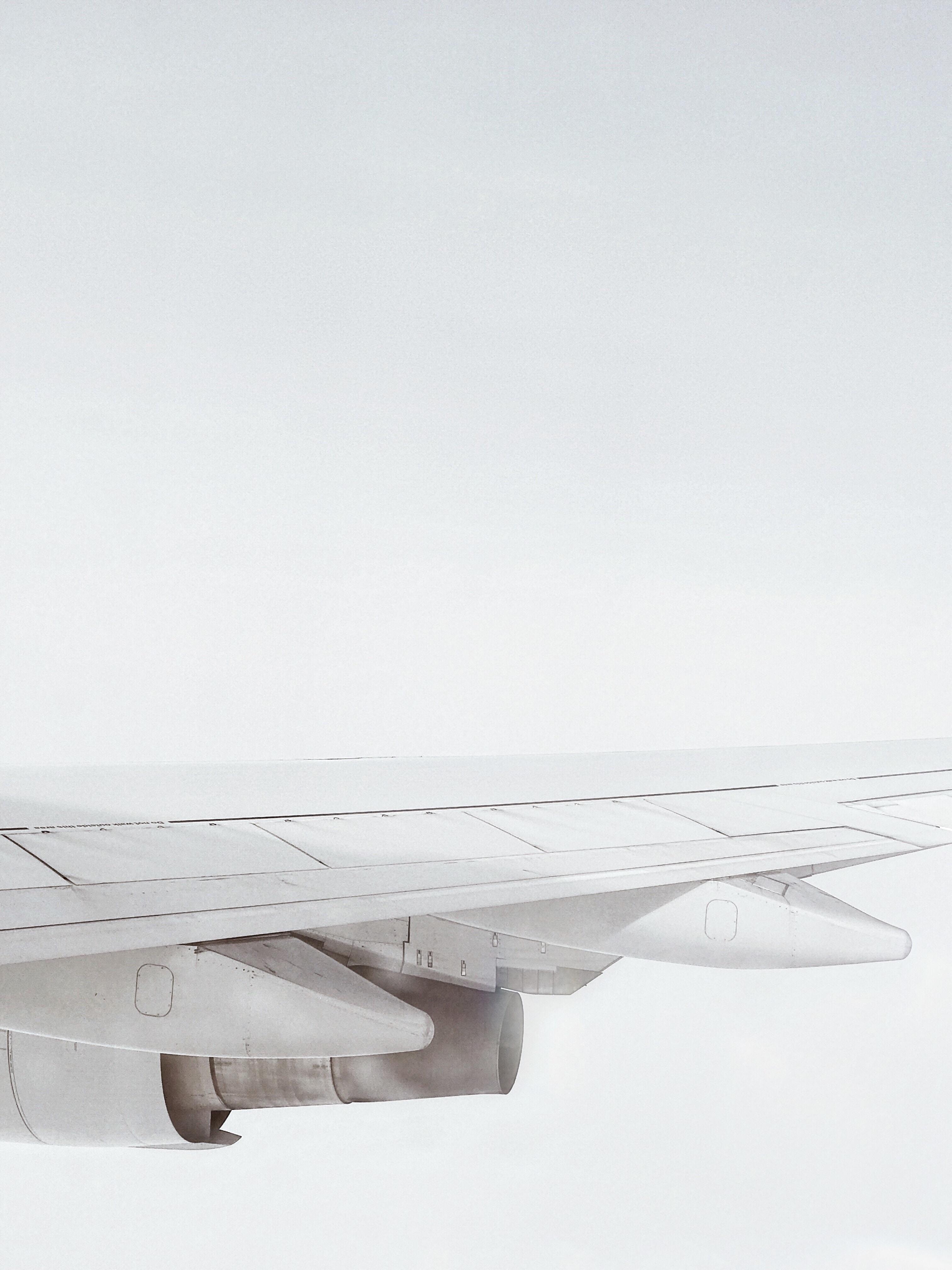 white plane wing