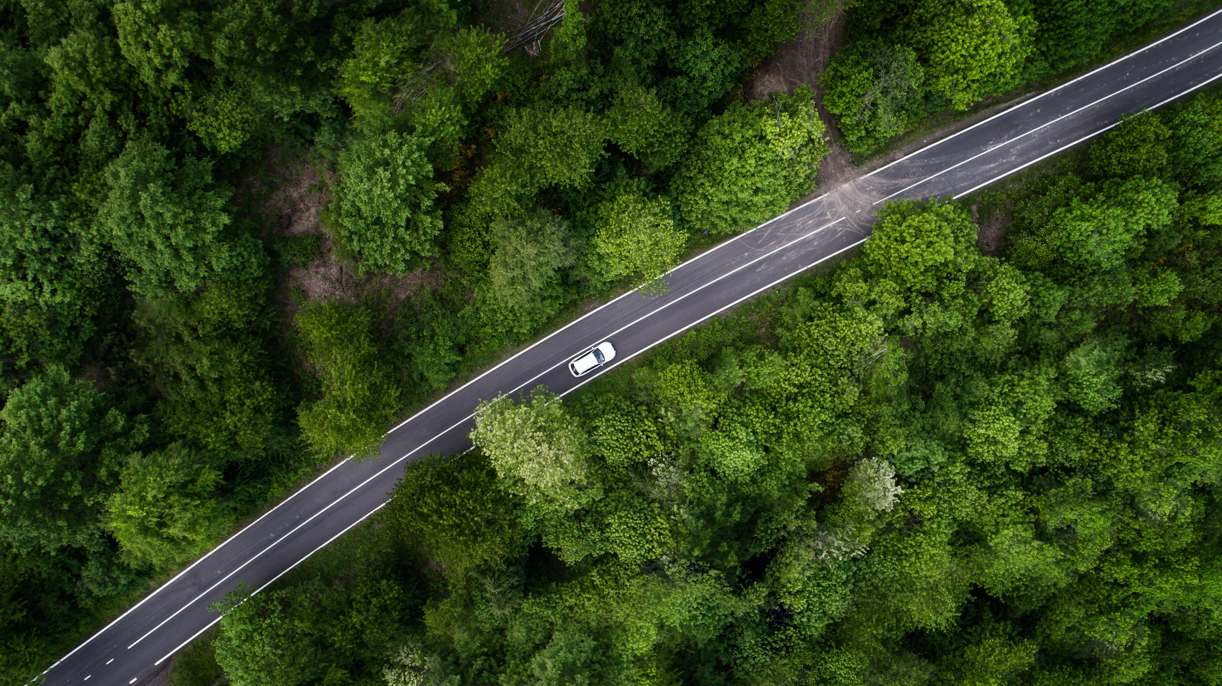 aerial photography of car treading road between green trees