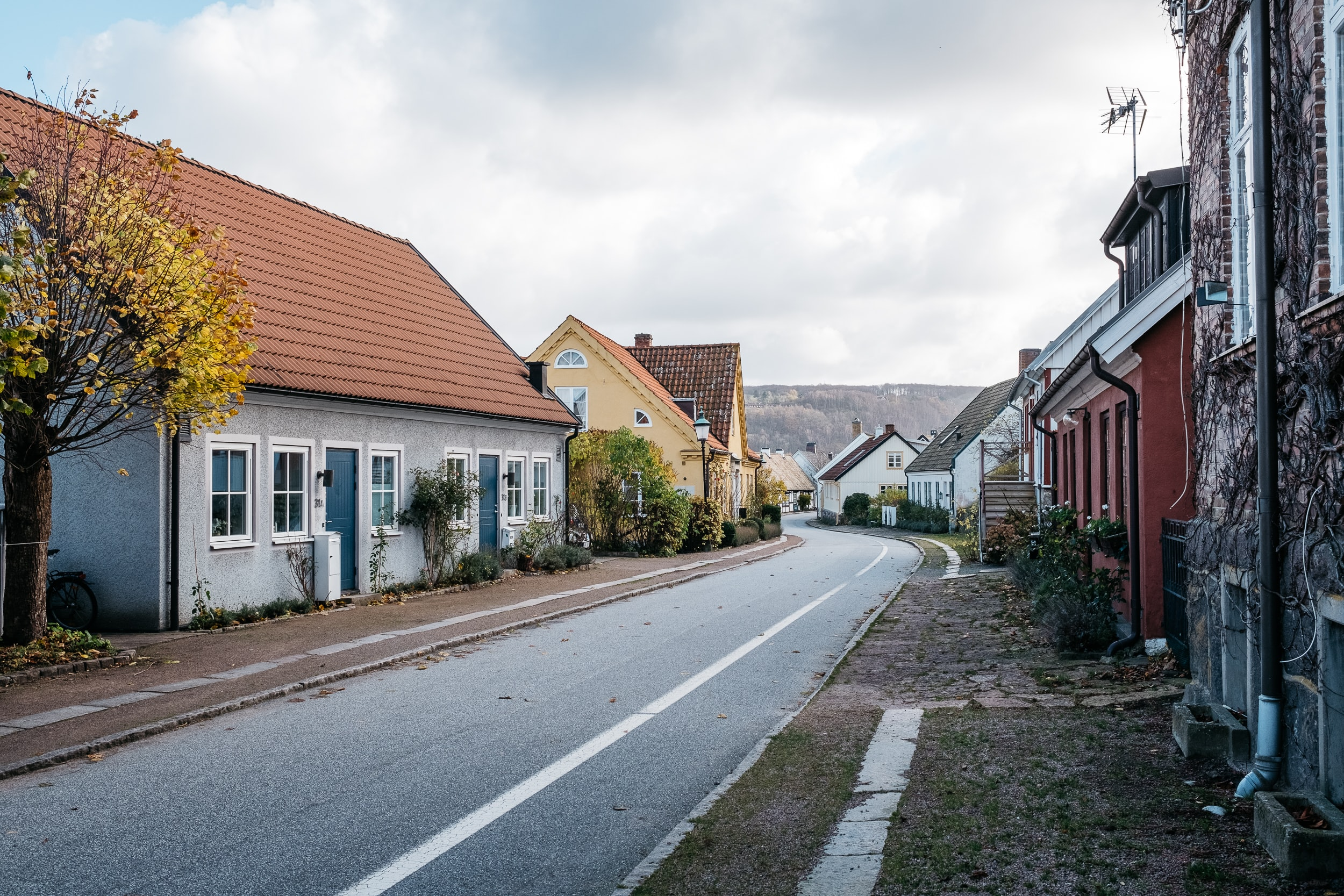 road near houses