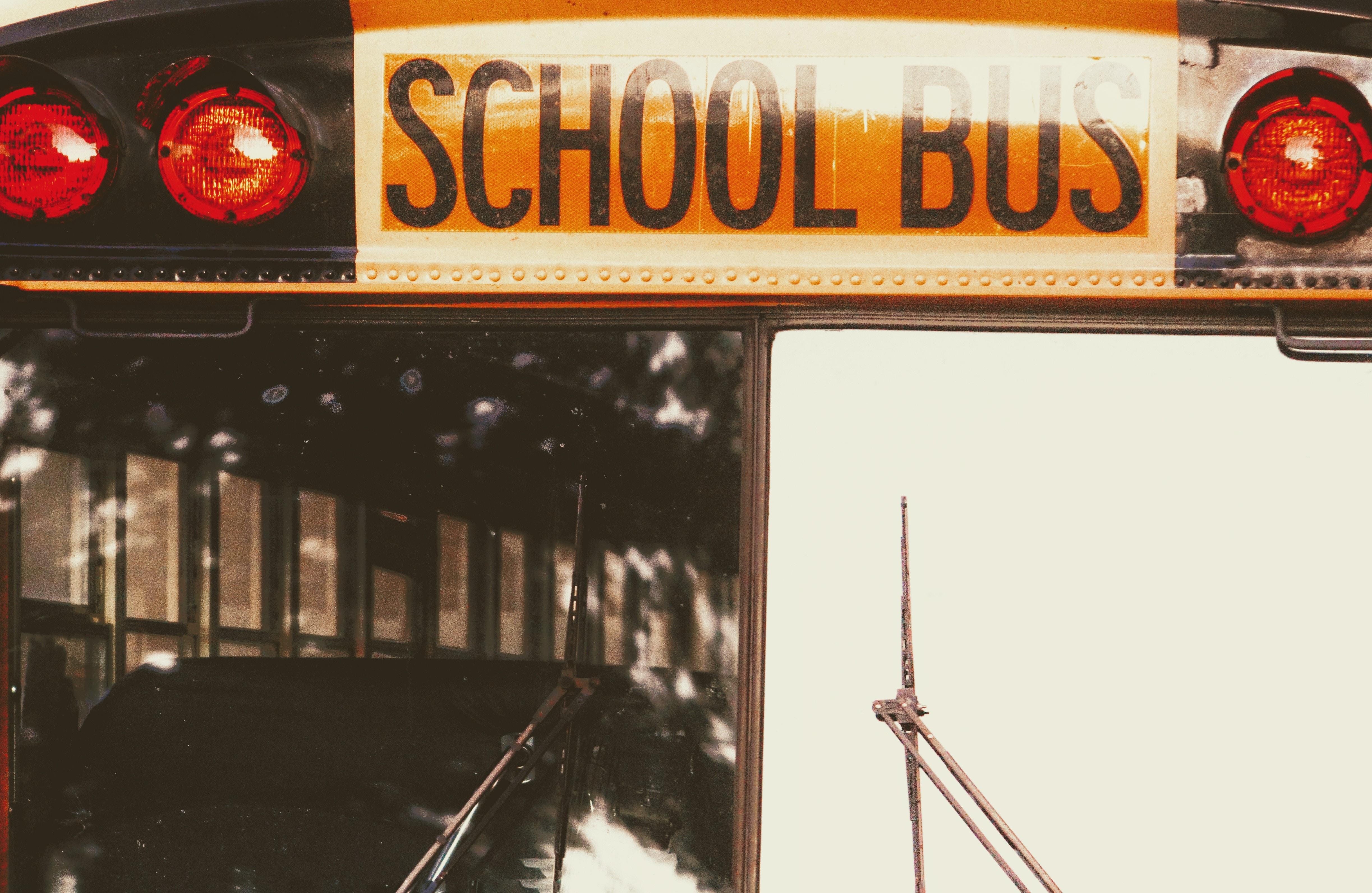closeup photo of School Bus