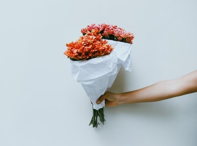 person holding red petaled flowers bouquet teams background