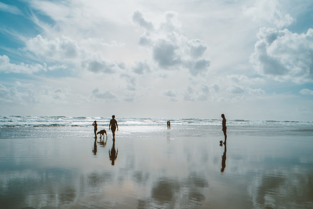 group of people on beach under cloudy sky