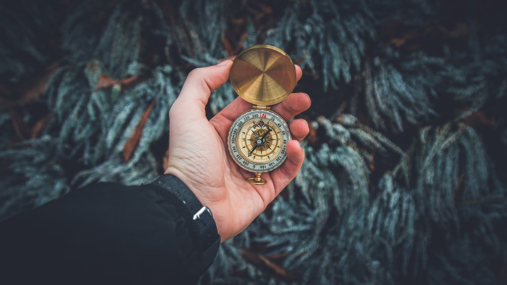 person holding brass-colored compass