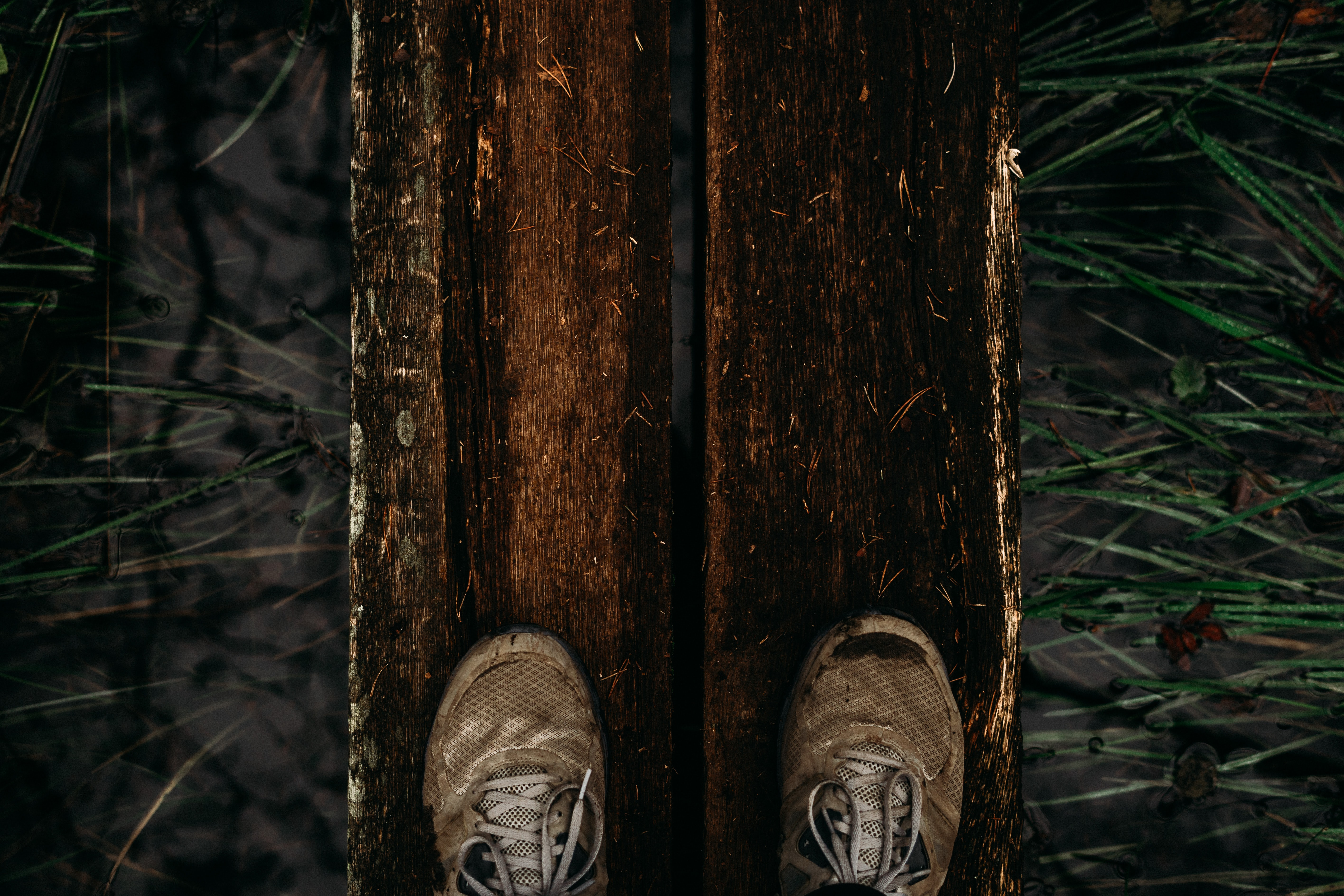 two brown shoes on two brown wood planks