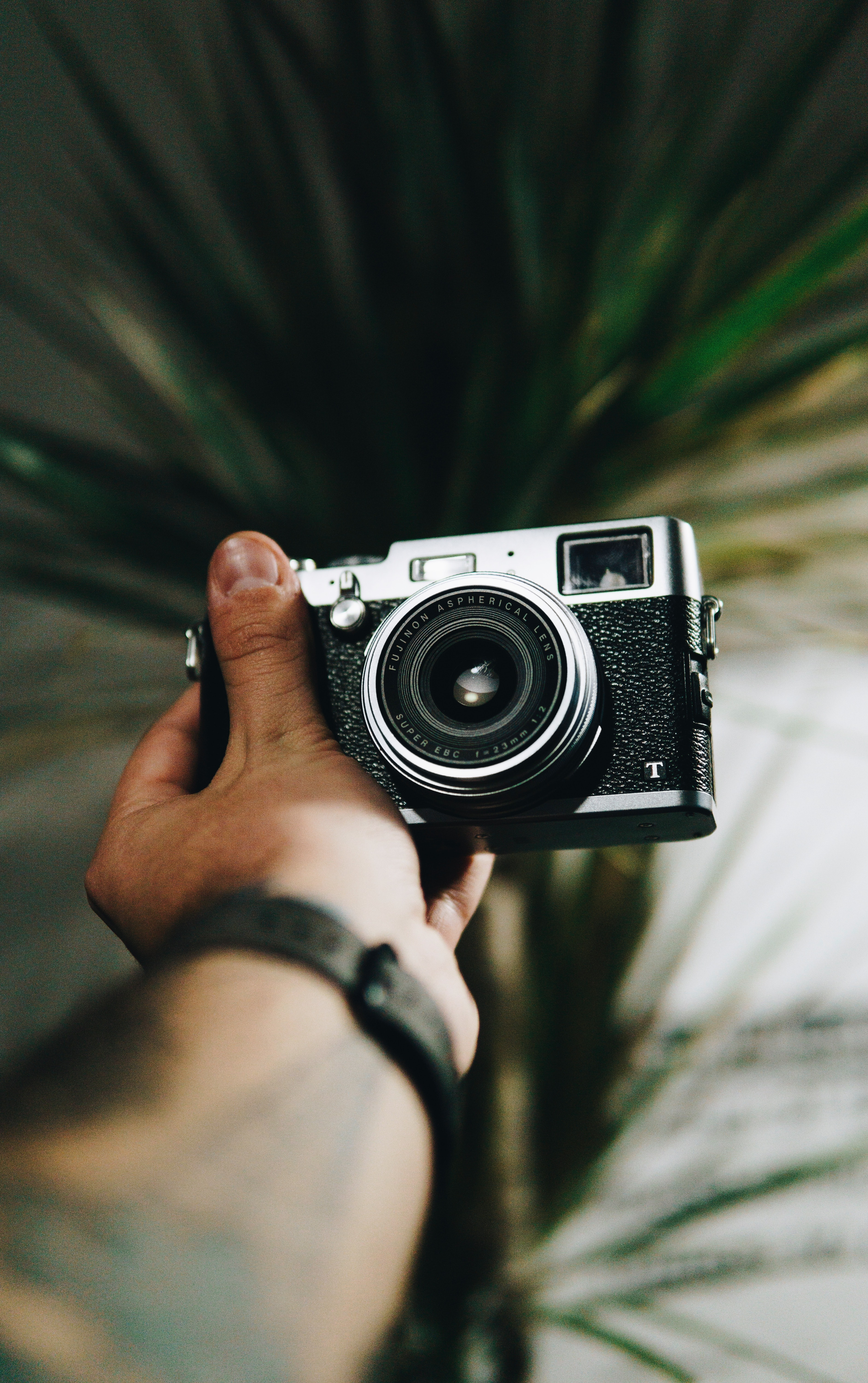 person holding black and gray SLR camera
