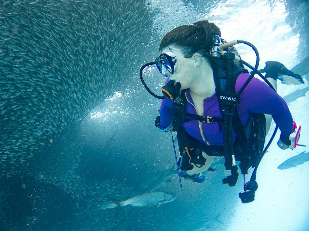woman doing scuba diving near school of fish