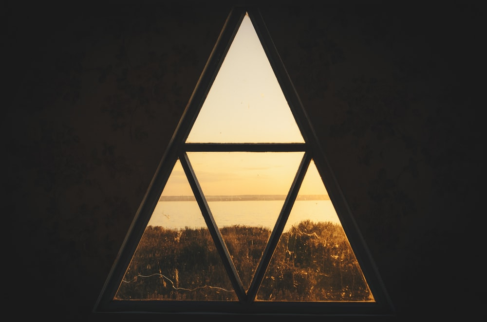window near tall tree during golden hour