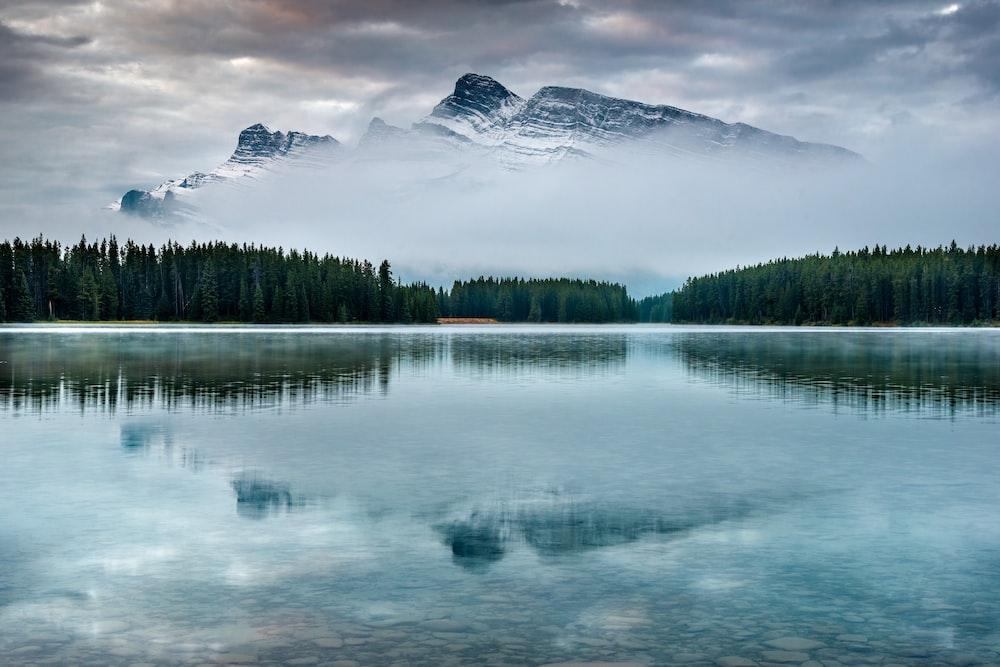 snow-capped mountain near body of water and trees