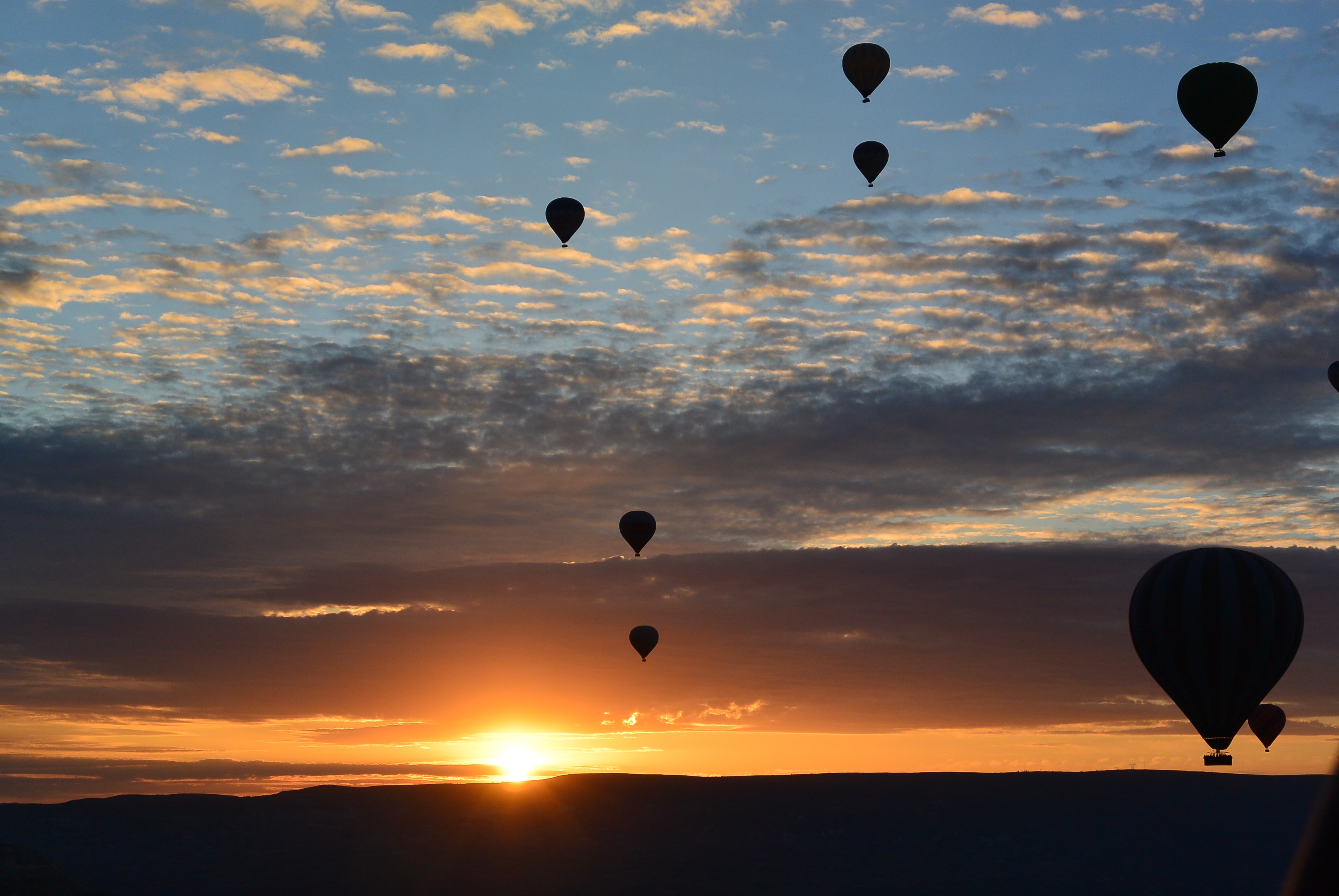 silhouette photo of hot air balloons