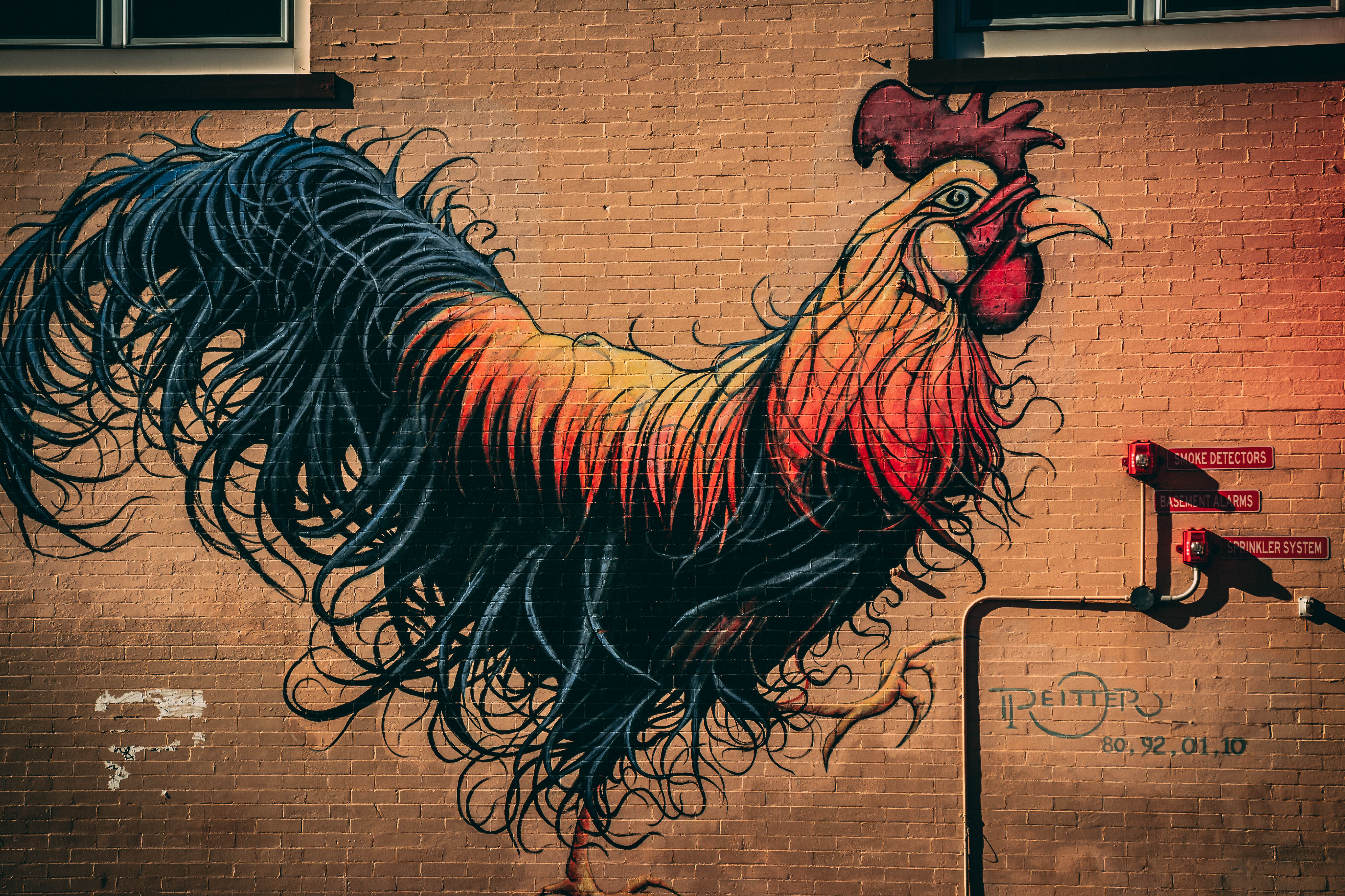 rooster mural during daytime