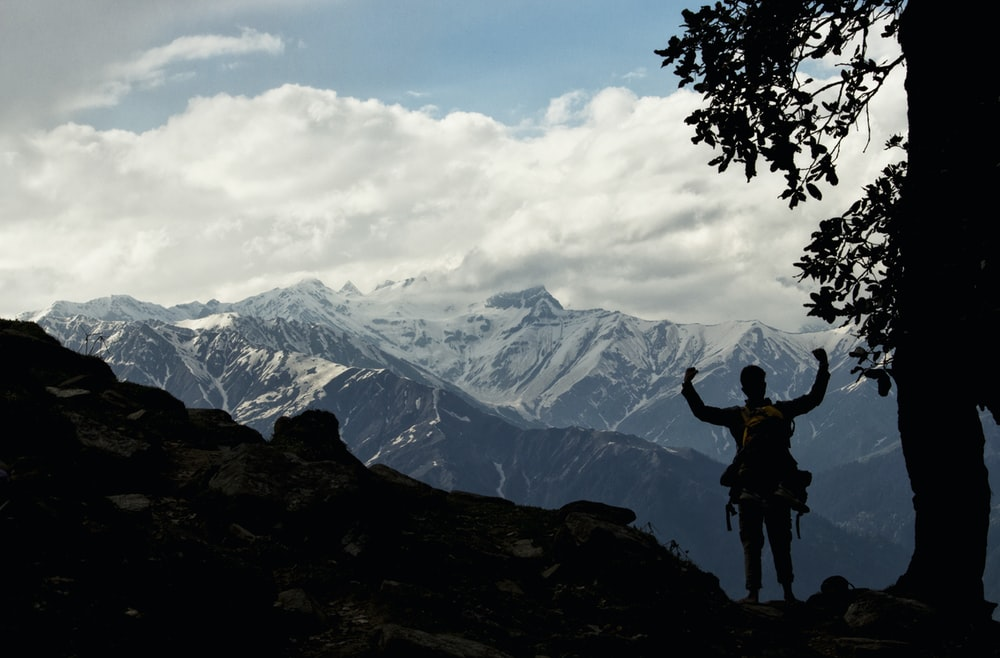 man standing near tree infront of mountain