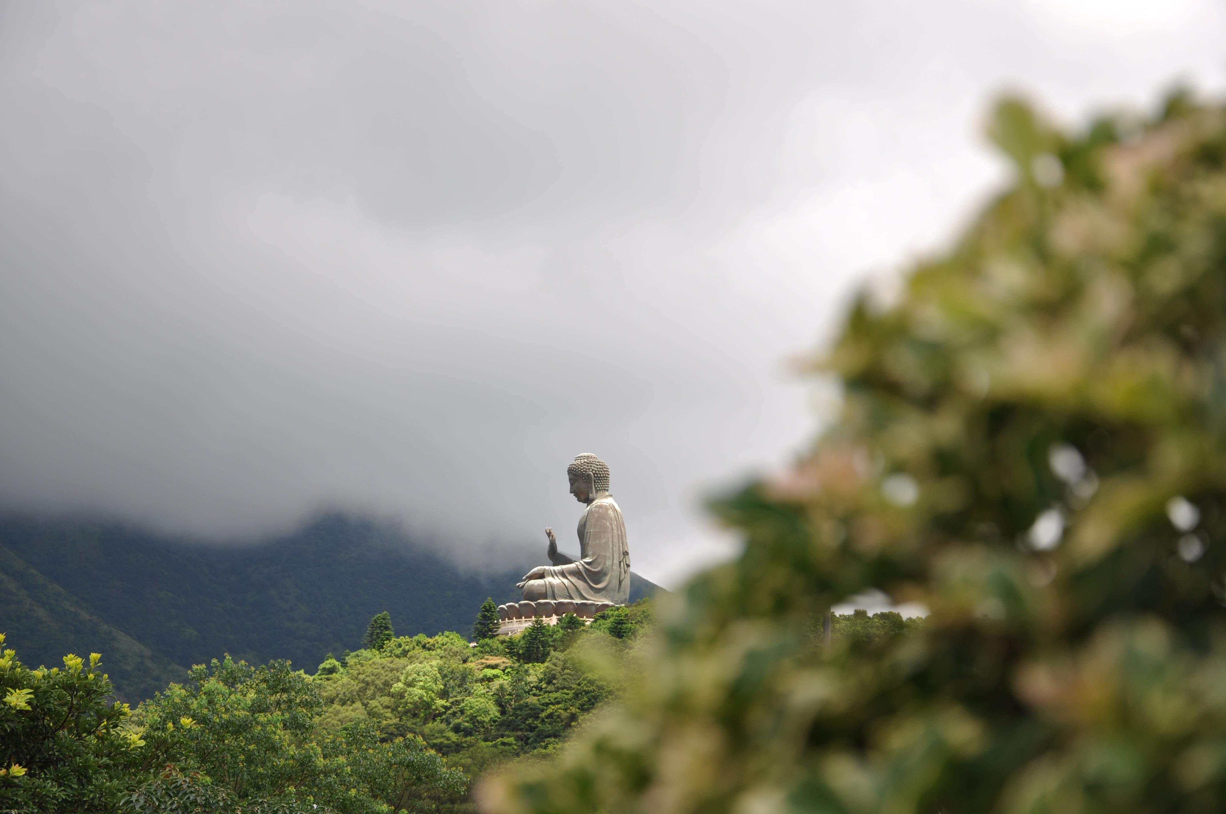 gray concrete Buddha statue over the mountain under white sky
