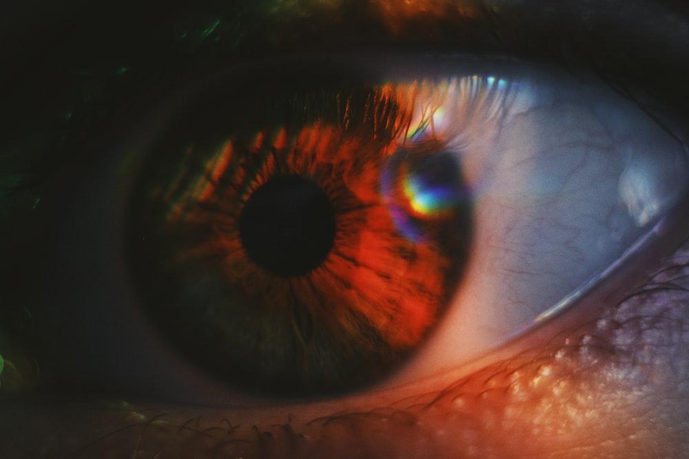 macro photography of opened human eye
