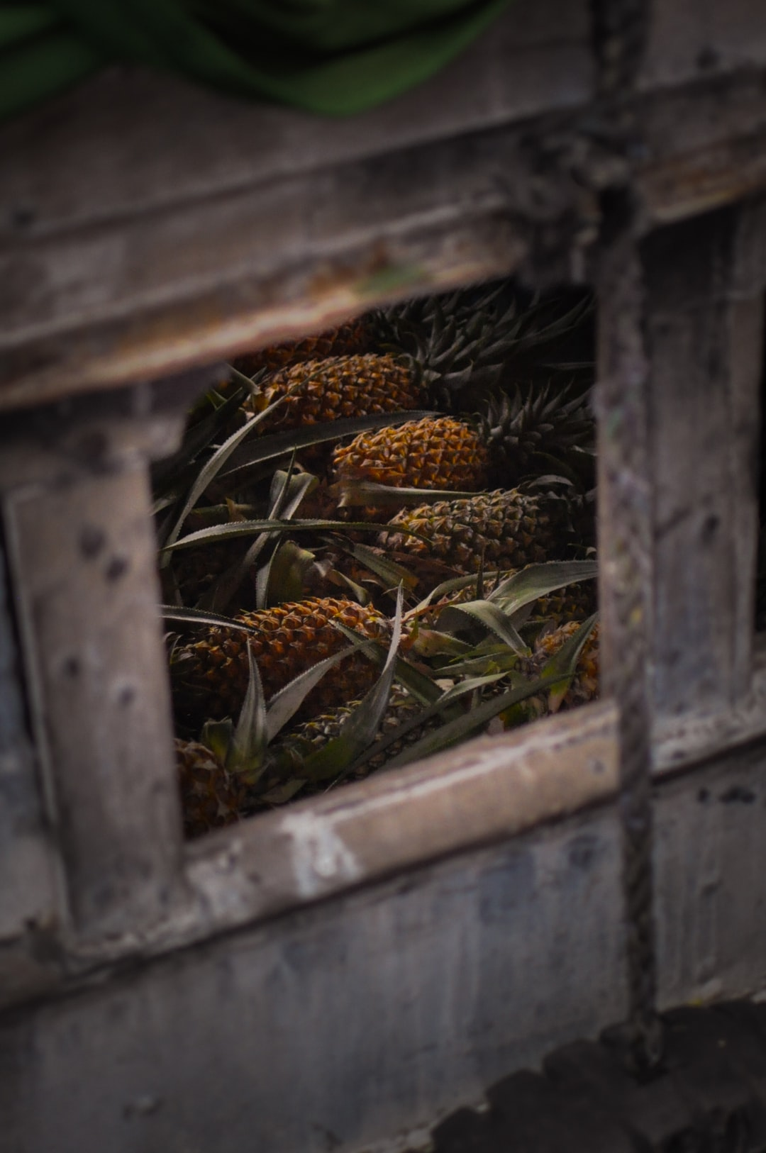 Wondering on the floating market in the Mekong delta, I picked through a window into a boat and found a few pineapples giving all their colors even in the darkness of the boat
